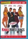Knallharte Jungs DVD Tobias Schenke, Axel Stein s. g. Zust.