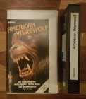 American Werewolf (Spectrum Video) Glasbox
