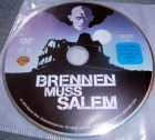 Brennen muss Salem (Salem's Lot) DVD Stephen King