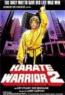 Karate Warrior 2 - Blood Tiger - DVD   (GH)