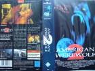 American Werewolf 2   ... Horror - VHS !!!