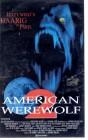 American Werewolf 2 (23677)