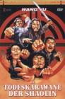 Die Todeskarawane der Shaolin - X-Rated 29 gr. Hartbox DVD