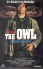 The Owl (23731)