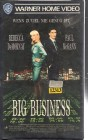 Big Business (23889)