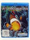 Unterwasserwelten - Rotes Meer - Unter dem Meer Aufnahmen