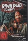 Brain Dead Zombies (22812)