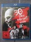 30 Days of Night: Blutspur