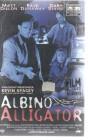 Albino Alligator (25092)