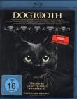 DOGTOOTH Blu-ray - Störkanal grosses Kino Griechenland
