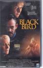 Black Bird (25237)