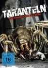 DVD Taranteln - Sie kommen um zu töten