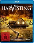 The Harvesting BR  - NEU - Horror