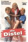 Die Distel (25488)