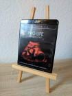 Blu-ray PRO-LIFE - DES TEUFELS BRUT - Black Edition