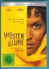 Wüstenblume DVD Sally Hawkins, Liya Kebede s. g. Zustand