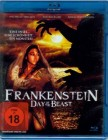 Frankenstein - Day of the Beast - Blu Ray