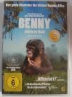 Benny - Allein im Wald - Menschenaffen im Kongo, Affen