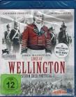 LINES OF WELLINGTON Sturm über Portugal - Blu-ray Historie
