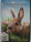 Kaninchen -  Tierfilm für Liebhaber der plüschigen Hasen