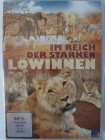 Im Reich der starken Löwinnen - 9 Löwen und ihre Babys
