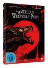 An American Werewolf in Paris - DVD/BD Mediabook Lim 2000OVP