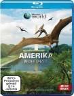 Amerika in der Urzeit   -  Blu-Ray