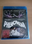 Phenomena / OVP