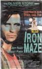 Iron Maze (27062)