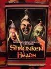Shrunken Heads UNCUT AVV / X-Rated HGC 18 (Gr. Hartbox) NEU