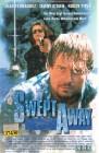 Swept Away (27142)