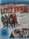 Lost Dogs - Manche Hunde bellen, diese beißen - Hippies