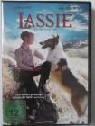 Lassie - Der treue Freund - Gold in den Bergen, Rauer Westen