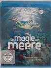 Die Magie der Meere - spektakuläre Unterwasser Reise