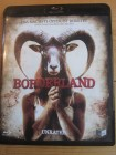 Borderland Uncut Bluray