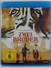 Zwei Brüder - Jean Jacques Annaud, Guy Pearce - Tiger