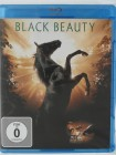 Black Beauty - Der stürmische Hengst - Sean Bean, Tierfilm