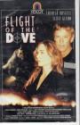 Flight Of The Dove (27551)
