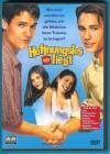 Hoffnungslos verliebt DVD Shane West, Marla Sokoloff s. g. Z