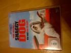 Shaggy Dog - Hör mal, wer da bellt-DVD