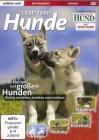 Liebe Tiere ! - Hunde: Von kleinen und großen Hunden