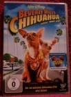 Walt Disney Beverly Hills Chihuahua DVD