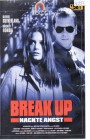 Break Up (4252)