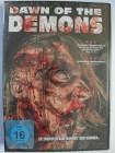 Dawn of the Demons - Gibt es Dämonen? - Schwarze Messe