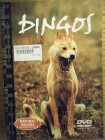 Natural Killers - Dingos, Freund oder Feind ?
