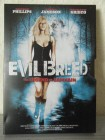 Evilbreed - Legend of Samhain I-ON NEW MEDIA