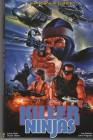 Killer Ninjas - Große Hartbox