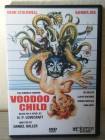 Voodoo Child - The Dunwich Horror ST.PETER