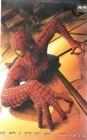Spider-Man (29339)