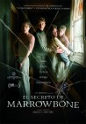 El Secreto de Marrowbone (englisch, DVD)